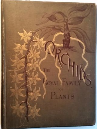 Orchids, the Royal Family of Plants. With illustrations from nature. . Harriet Stewart Miner
